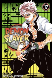 Demon Slayer: Kimetsu no Yaiba, Vol. 17 Book Cover