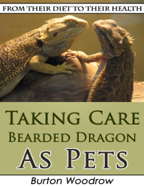 Taking Care Bearded Dragon As Pets: From Their Diet to Their Health