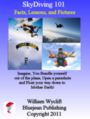 SkyDiving 101: Facts, Lessons, and Pictures
