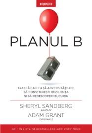 Planul B PDF Download