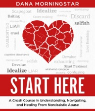 Start Here A Crash Course In Understanding, Navigating, And Healing From Narcissistic Abuse