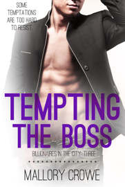 Tempting The Boss book