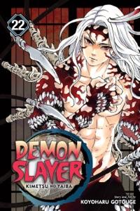 Demon Slayer: Kimetsu no Yaiba, Vol. 22