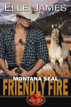 Montana SEAL Friendly Fire image