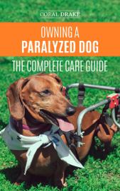 Owning a Paralyzed Dog - The Complete Care Guide