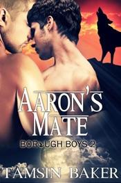 Aaron's Mate