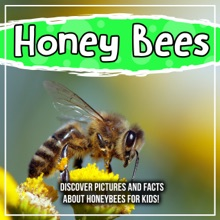 Honey Bees: Discover Pictures And Facts About Honeybees For Kids!
