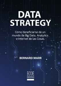Data strategy Book Cover