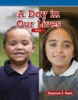 A Day In Our Lives
