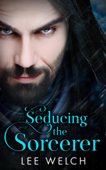 Seducing the Sorcerer Book Cover