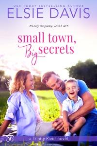 Small Town, Big Secrets Book Cover