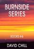 David Chill - The Burnside Mystery Series, Box Set #2 (Books 4-6) artwork