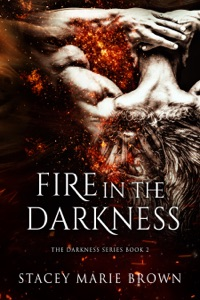 Fire In The Darkness (Darkness Series #2)