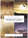 Photographing Birds At Bosque Del Apache