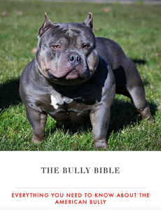 The Bully Bible: Everything You Need to Know About the American Bully La couverture du livre martien