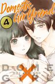 Domestic Girlfriend Volume 4 Book Cover