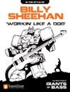 Billy Sheehan - Workin Like A Dog
