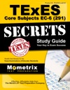 TExES Core Subjects EC-6 291 Secrets Study Guide