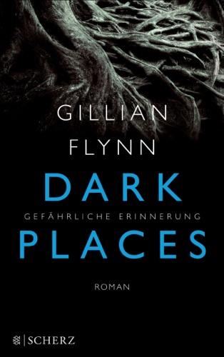 Gillian Flynn - Dark Places - Gefährliche Erinnerung