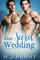 Our Secret Wedding