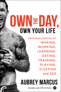 Own the Day, Own Your Life E-book