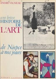 Une Br Ve Histoire De L Art De Niepce Nos Jours