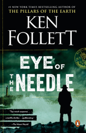 Eye of the Needle book summary