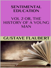 SENTIMENTAL EDUCATION VOL 2 OR, THE HISTORY OF A YOUNG MAN