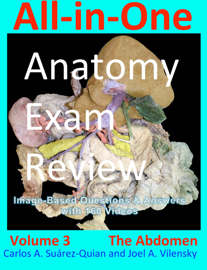 All-in-One Anatomy Exam Review: Volume 3. The Abdomen