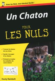 Un chaton Pour les Nuls