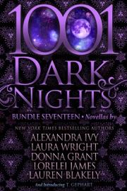 1001 Dark Nights: Bundle Seventeen PDF Download