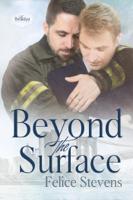 Felice Stevens - Beyond the Surface artwork