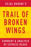 Trail Of Broken Wings By Sejal Badani  Summary  Analysis