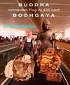 Buddha Nimmt Den Flug AI 433 Nach Bodhgaya