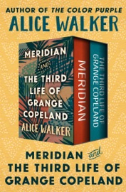 Meridian and The Third Life of Grange Copeland PDF Download