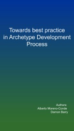 Towards Best Practice In The Archetype Development Process