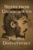 Fyodor Dostoyevsky - Notes from Underground  artwork