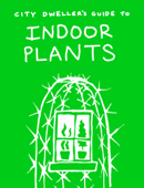 City Dweller's Guide to Indoor Plants