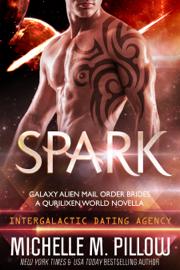 Spark: A Qurilixen World Novella book