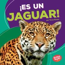 ¡Es un jaguar! (It's a Jaguar!)