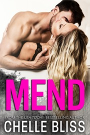 Mend PDF Download