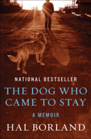 The Dog Who Came to Stay ebook Download