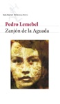 Zanjn De La Aguada