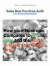 Sales Best Practices Audit An Introduction