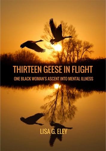 Lisa Eley - Thirteen Geese in Flight