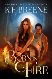 Born In Fire book