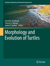 Morphology And Evolution Of Turtles