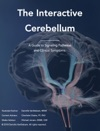 The Interactive Cerebellum