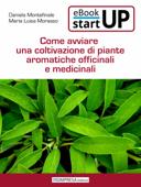 Come avviare una coltivazione di piante aromatiche, officinali e medicinali