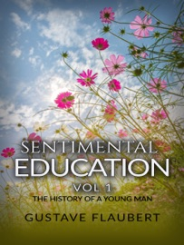 SENTIMENTAL EDUCATION, OR THE HISTORY OF A YOUNG MAN VOL 1